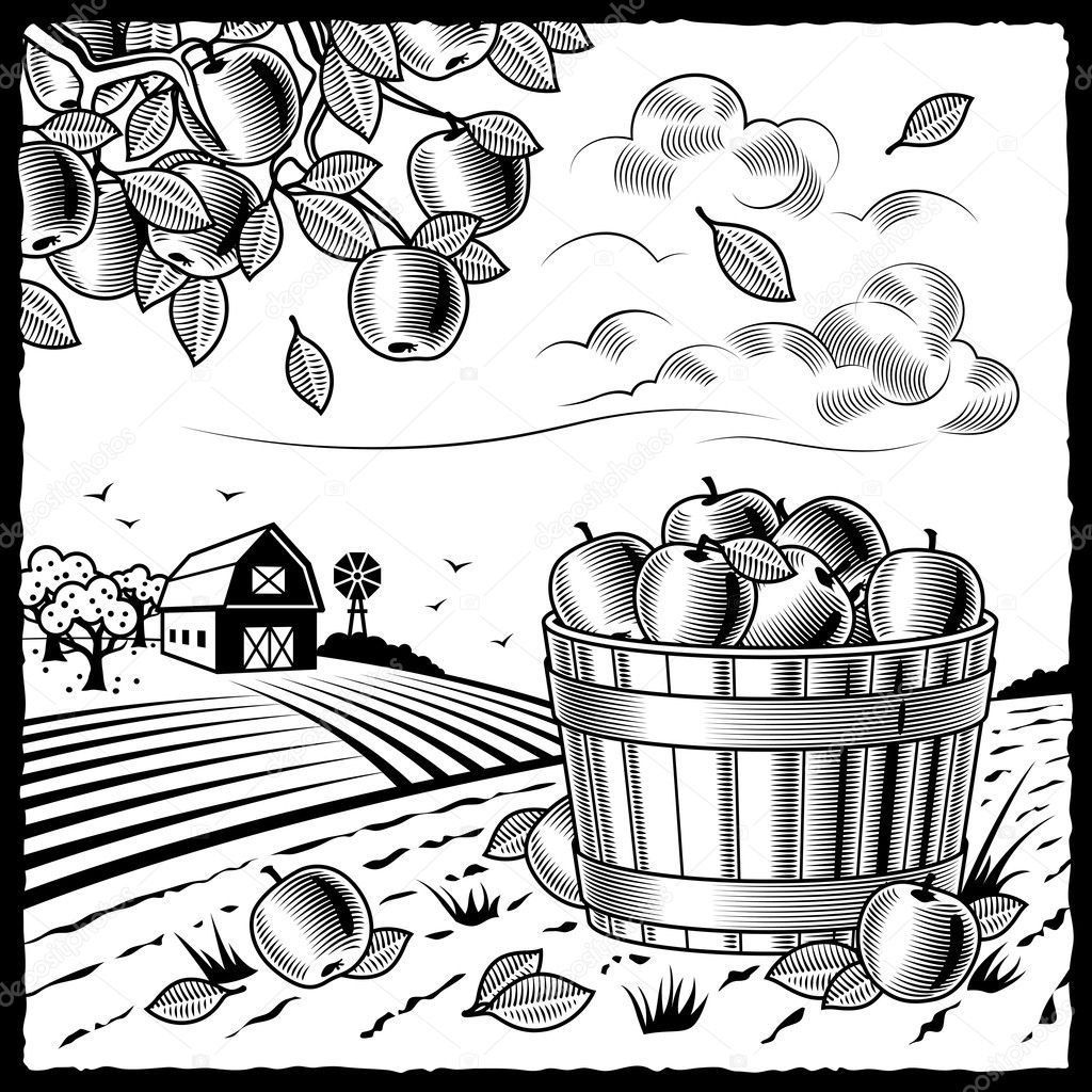 Fall Tree Coloring Page - Bing   Tree coloring page, Apple ...