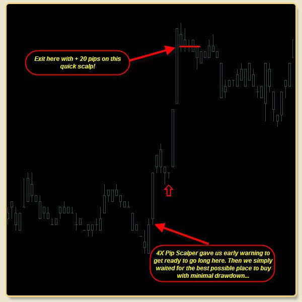 Download Forex Pip Snager Taking Pips In Forex Trading System For