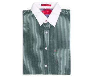 Van Heusen Sport Men's Shirt - Green Stripe
