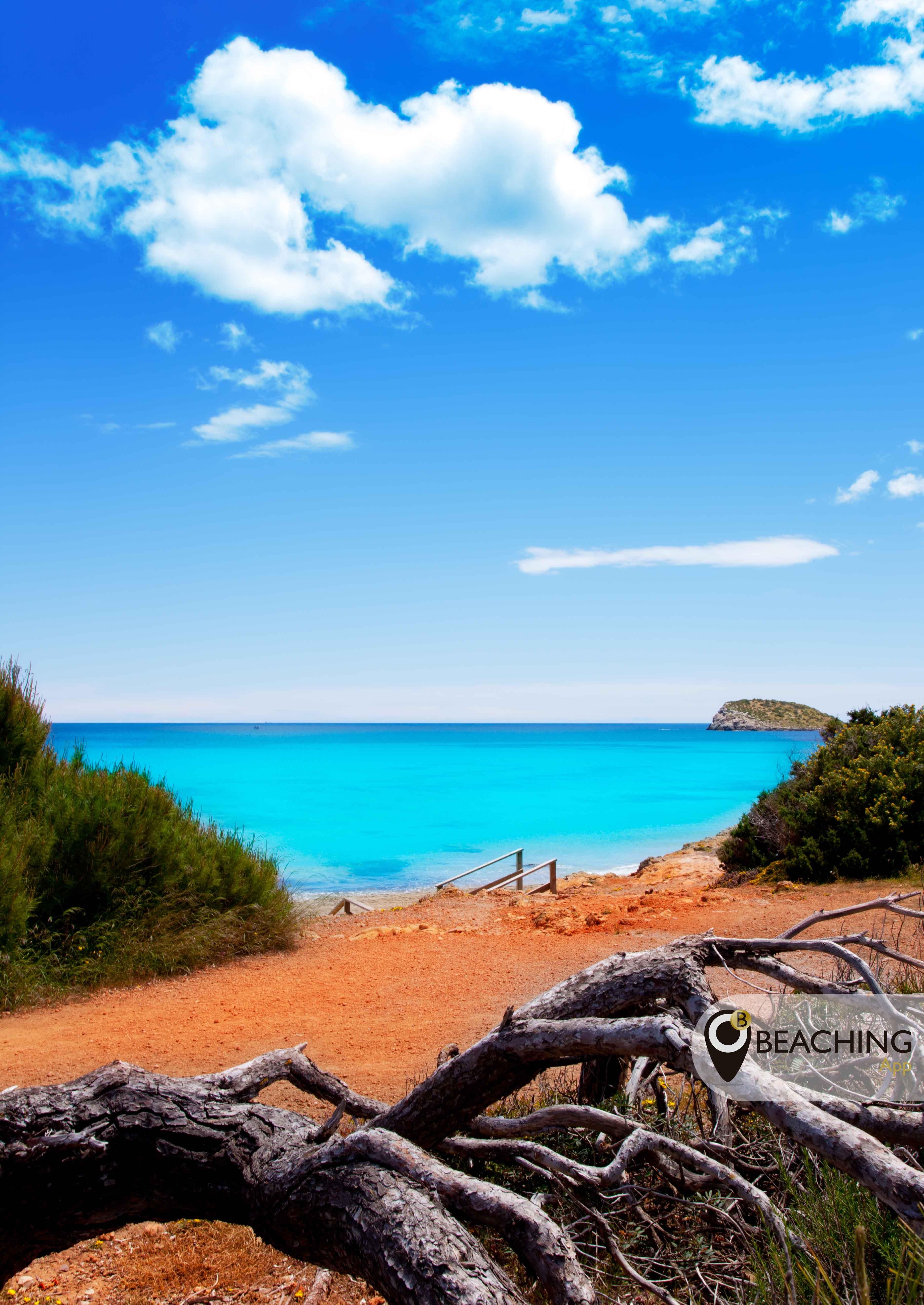 Situada en un lugar privilegiado, a 5 km de Santa Eulalia, la playa de Cala Nova es una playa de arena fina y aguas cristalinas, rodeada de pinares y dunas. Este mordisco de mar hermoso, solitario y virgen se divide en dos calas, en la parte trasera de Cala Nova se halla uno de los mejores campings de Ibiza. Presenta un lecho marino de arena fina, con poca pendiente, un baño seguro y agradable para toda la familia, pero hay que prestar atención en ocasiones al oleaje.