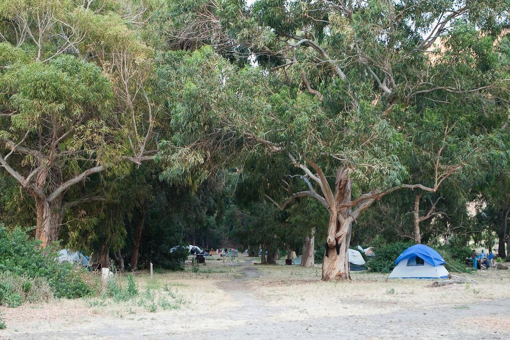 Any Good Camping Tents Out There #TentsForCamping ...