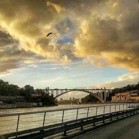 Porto - Ponte da Arrábida