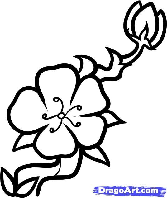 How To Draw A Cherry Blossom For Kids Step By Step Flowers For Kids For Kids Free Online Drawing Cherry Blossom Drawing Cherry Blossom Tree Cherry Blossom