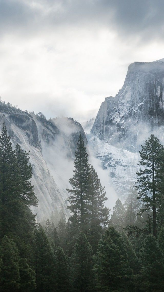 Yosemite 5k 4k Wallpaper 8k Forest Osx Apple Mountains Vertical Yosemite Wallpaper Yosemite Nature