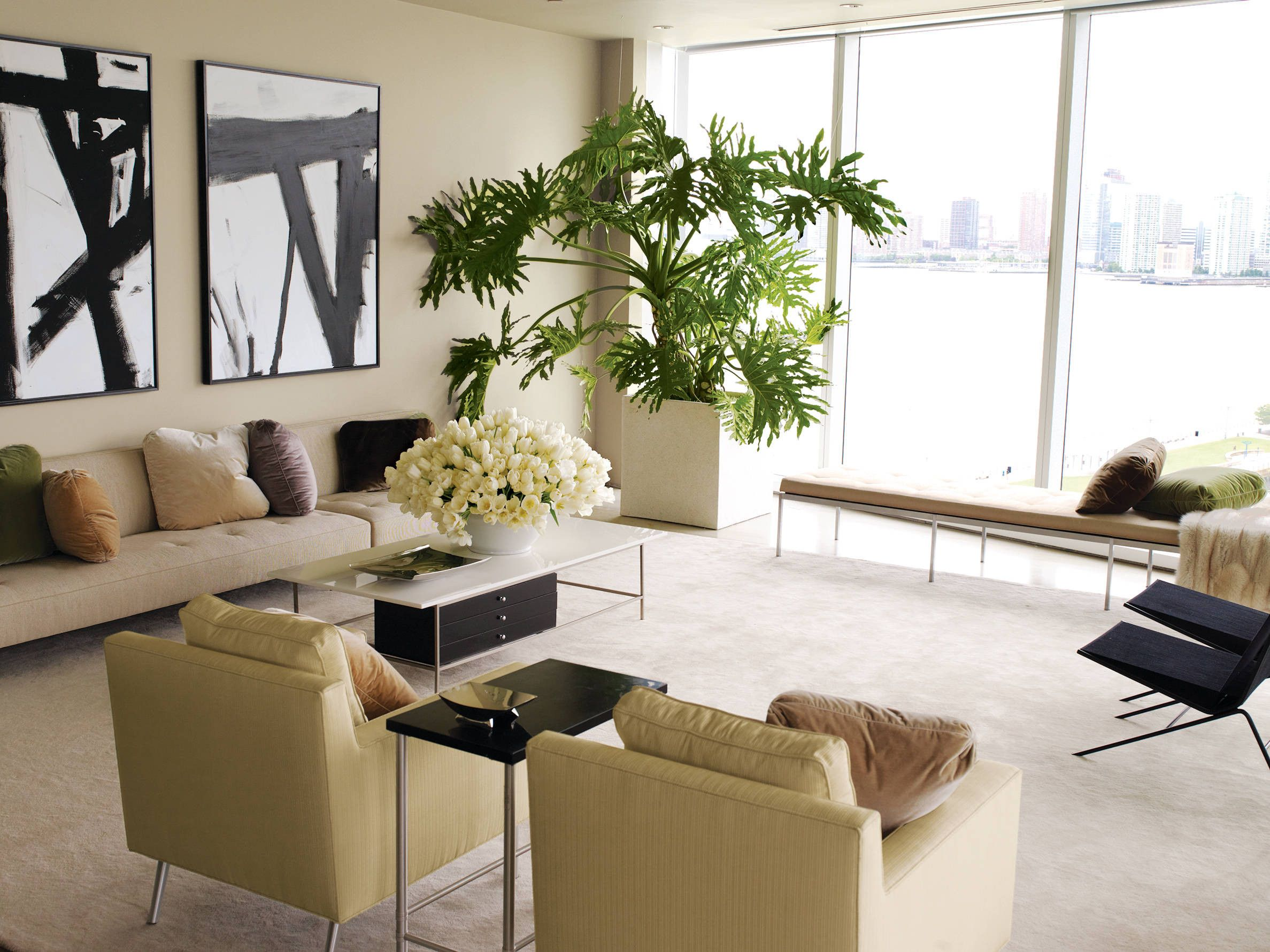 in decorative for white live plant black sofa maintenance table tv indoor green beautiful trees room plants living awesome best low decoration