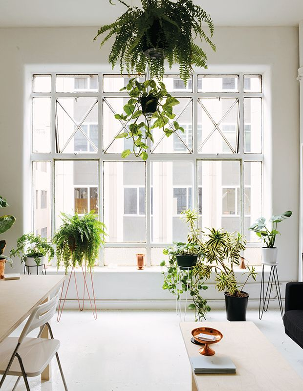 Jewelry Designer Anny Postolidis Uses Plant Stands And Hanging Baskets To Display Houseplants At Diffe Heights In Her Melbourne Studio
