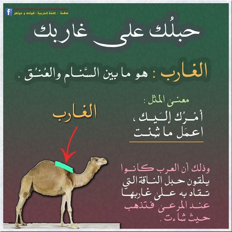 Pin By Essam Sayed Mohamed On Arabic Wisdom Islamic Phrases Spirit Quotes Words Quotes
