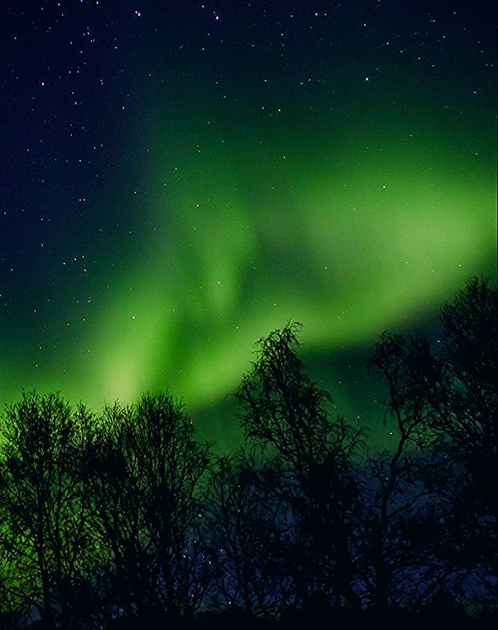 Green Northern Lights In Norway