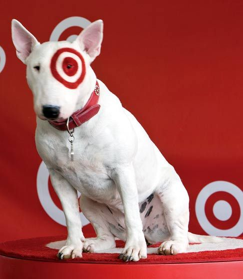 Bullseye Target Dog Bullseye The Target Pooch Is Top Dog In The Let S Read America Ii Autism Service Dogs Beloved Dog English Bull Terriers