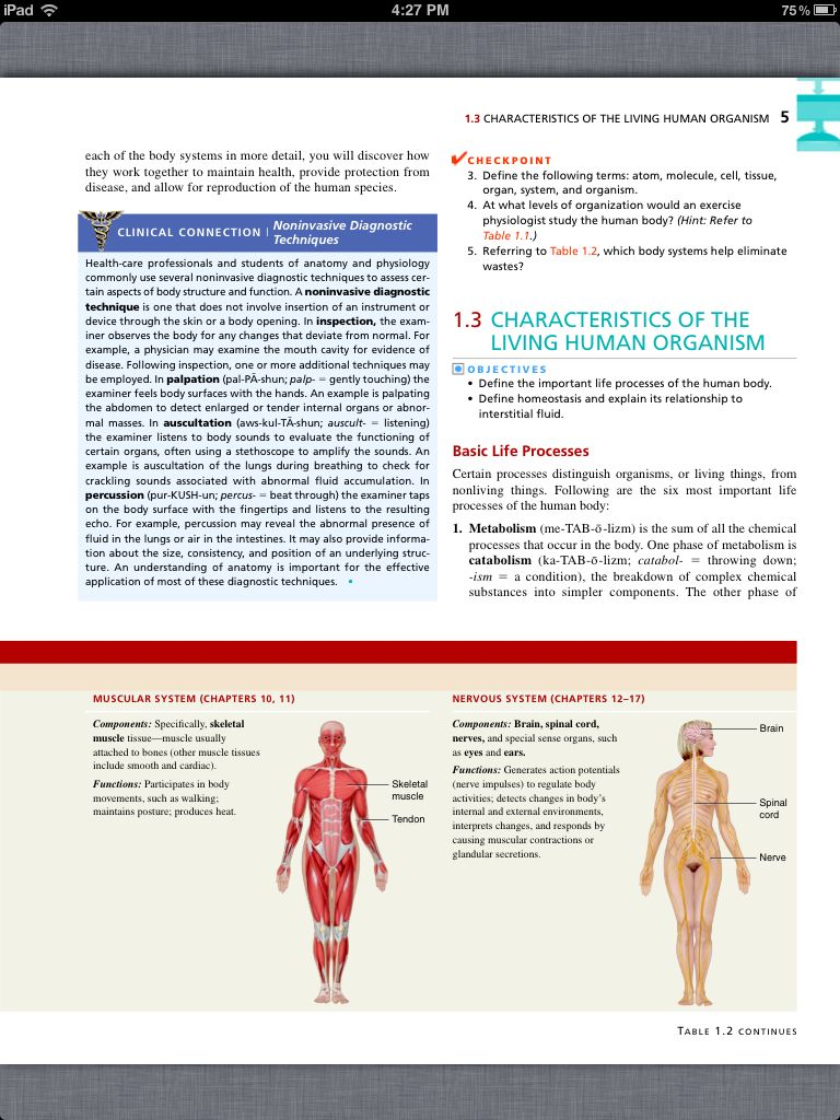 Principles of Anatomy and Physiology, Chapter 1, Intro to the Human ...
