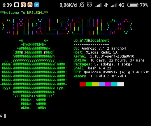 Cara Mempercantik Tampilan Termux Linux Penekanan Tulisan