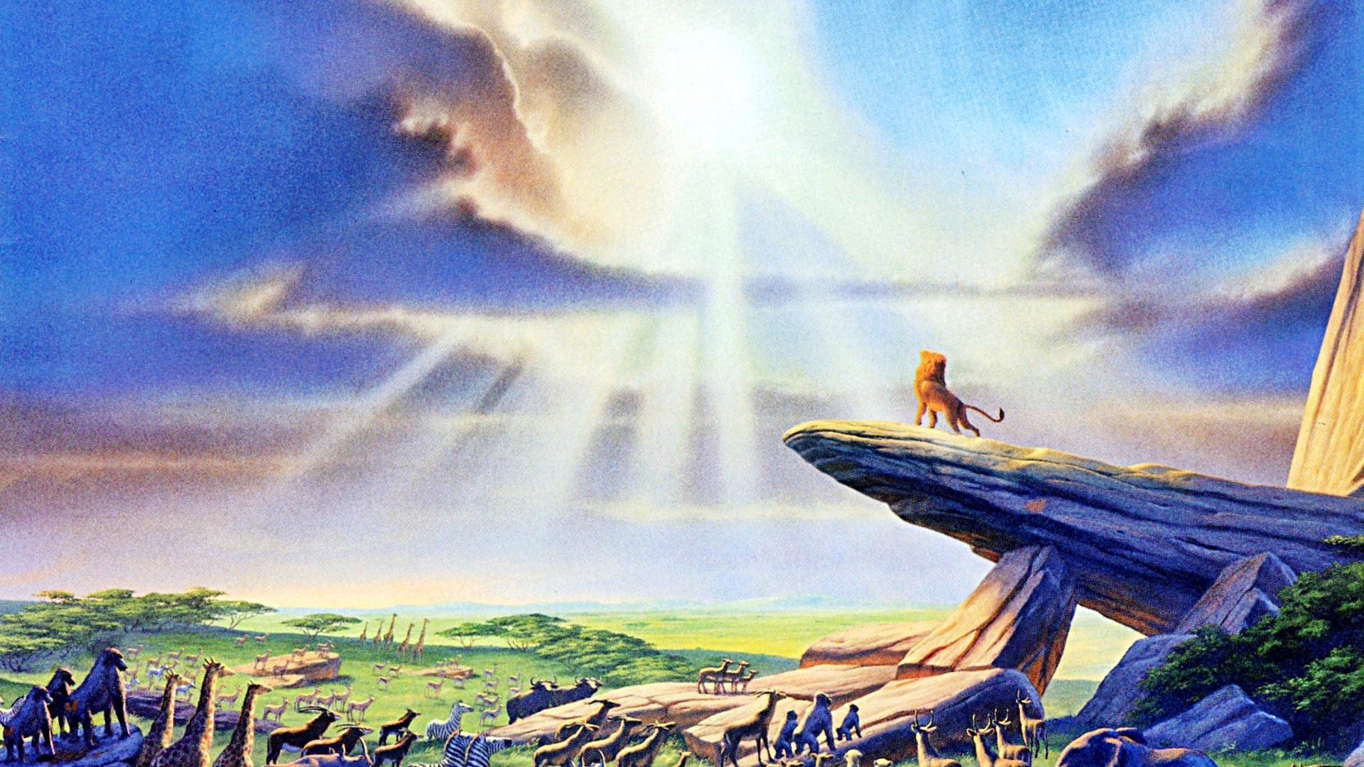 Walt Disney Wallpaper Of The Lion King HD And Background Photos Wallpapers
