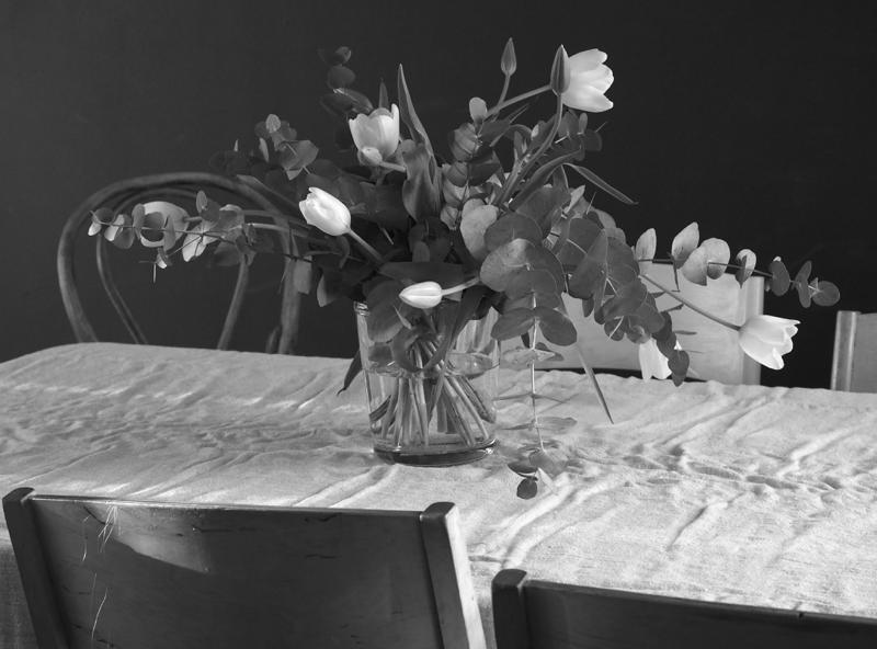 Väsähtänyt Tulppaani? Kukkakauppiaan parhaat vinkit tuunattuun tulppaanikimppuun ja hoito-ohjeet  sniikki piikki maalausprojektistani