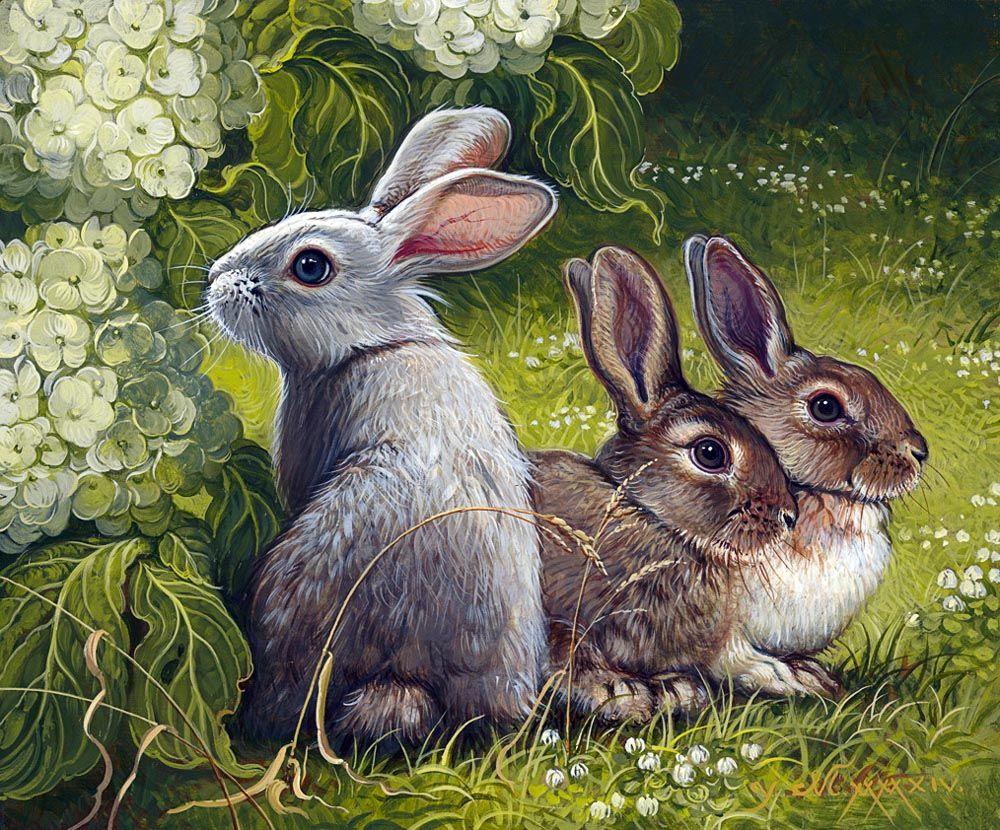 Открытки зайцами кроликами