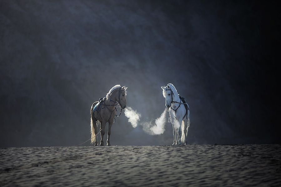 morning breath by asit , via 500px
