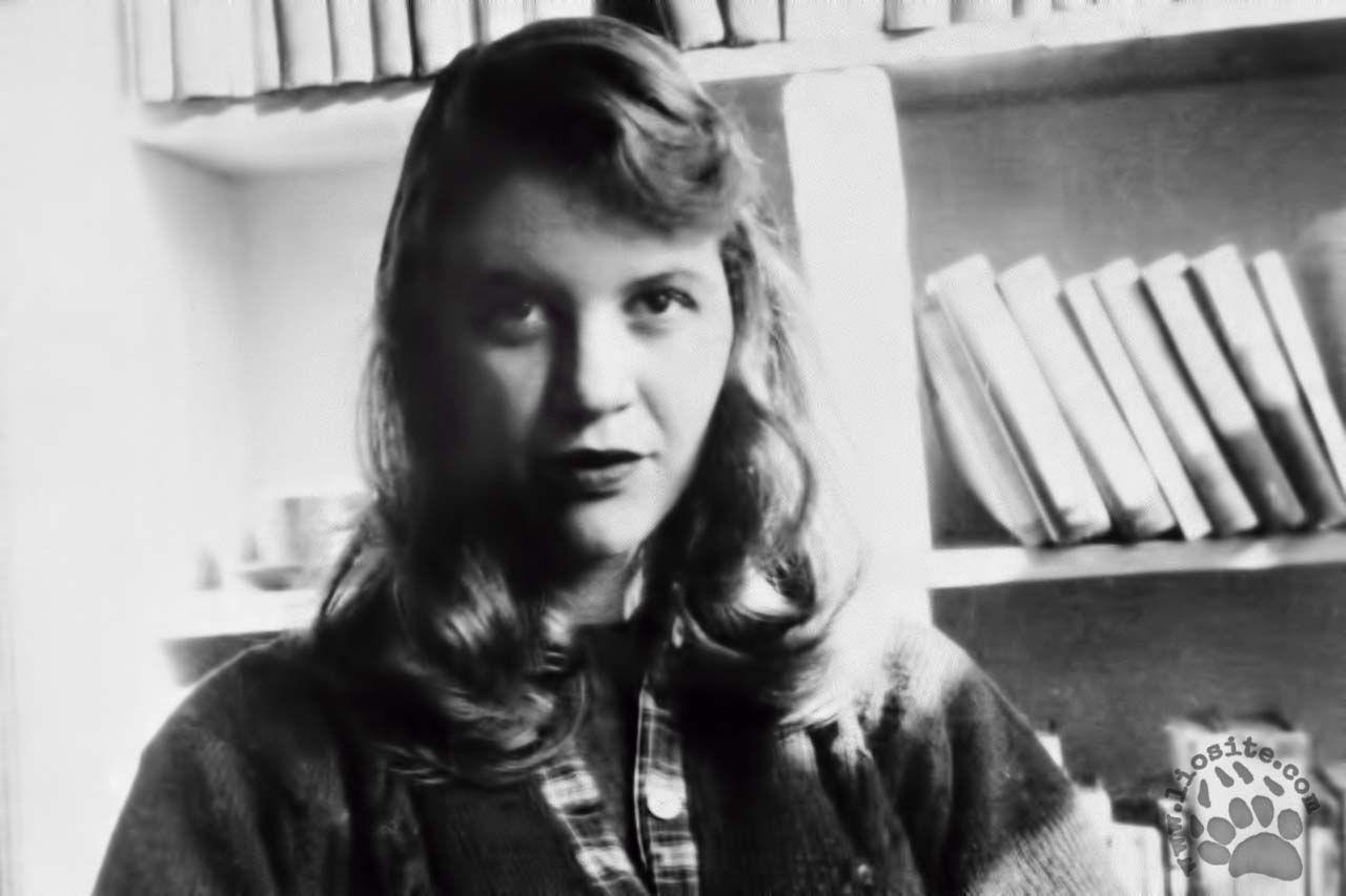 Sylvia Plath – Tu mi chiedi | Sylvia plath, Poesia e Poeta