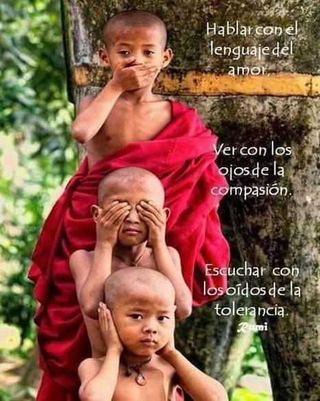 Habla con el Lenguaje del Amor... Ver con los Ojos de La Compasión... Escuchar con lo Oídos de La Tolerancia.   Rumi