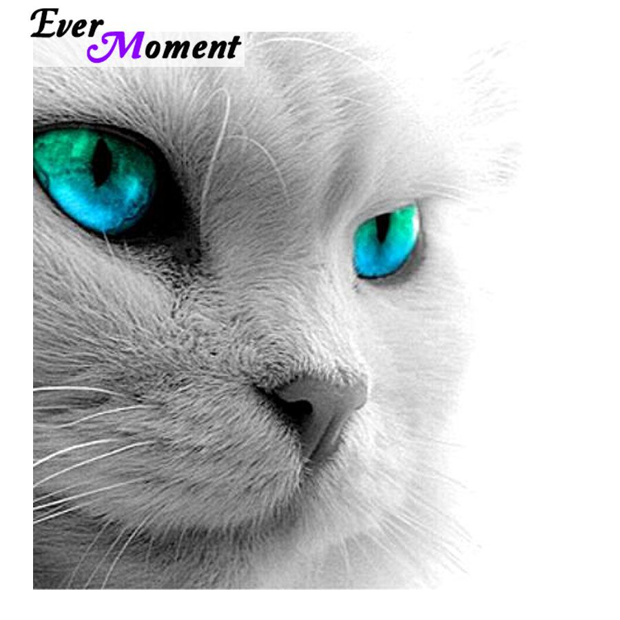 Ever Moment Diamond Painting Embroidery Cross Stitch Beadwork White Cat With Blue Eyes Animal 5d Needlework Diy Craft Asf608 Wolf With Blue Eyes Eyes Wallpaper Cat With Blue Eyes