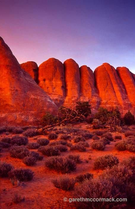 Evening light on the Devil's Garden fins, Arches National Park, Utah, USA. Stock Photo #utahusa