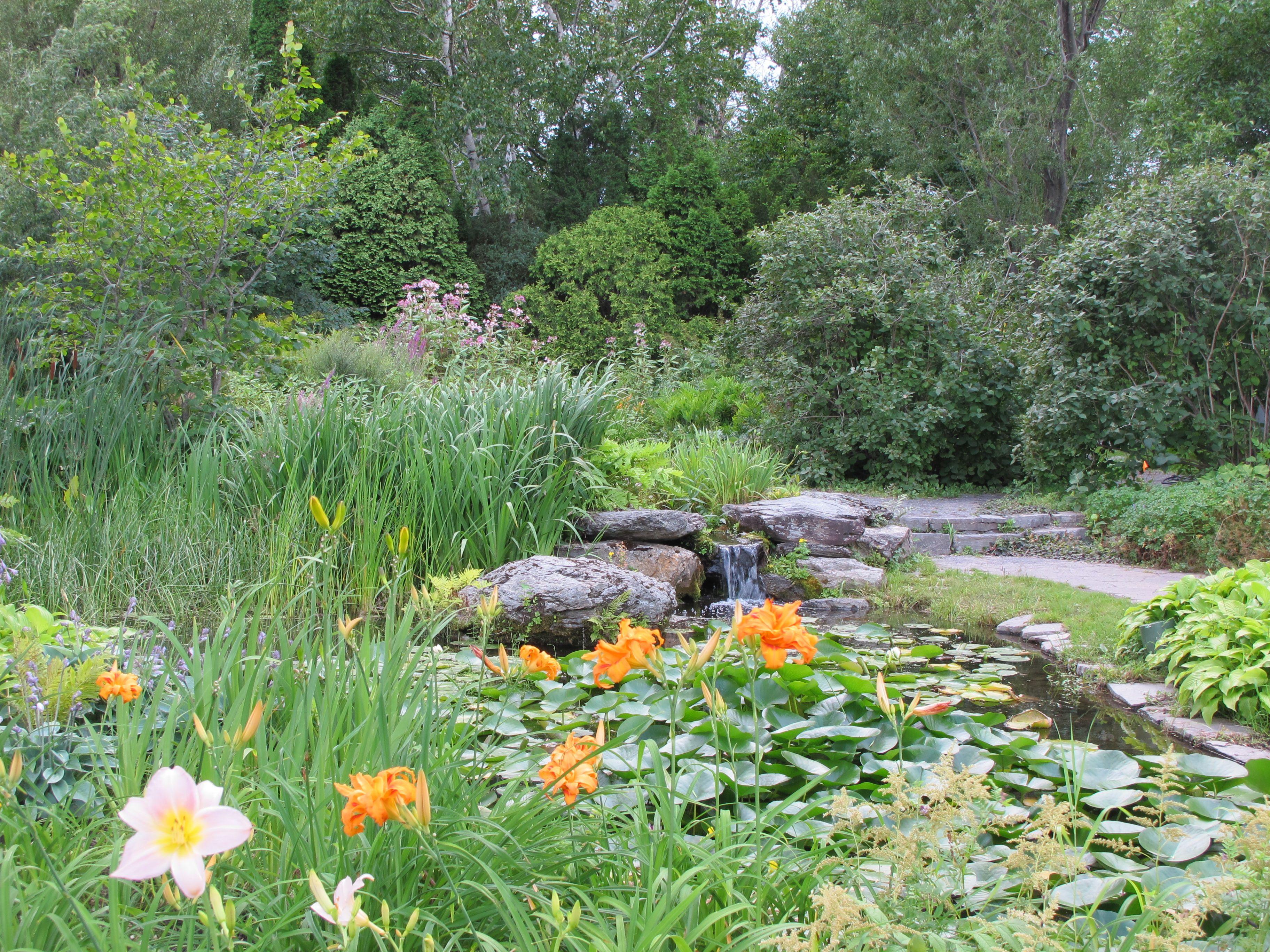 TéléMag Québec Dans mon jardin avec Larry Hodgson: Planter à l\'ombre ...