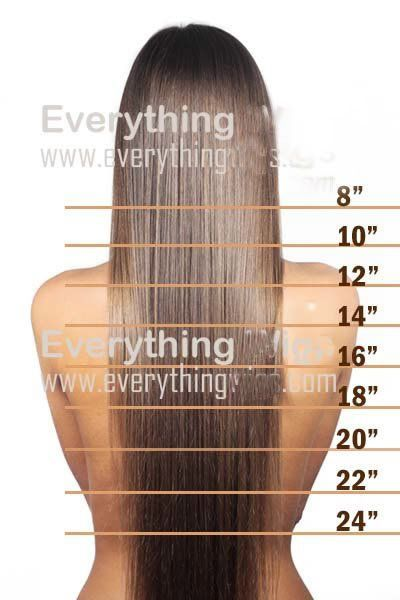 Growing My Hair This Long With Images 22 Inch Hair Extensions Hair Length Chart Hair Extensions Before And After