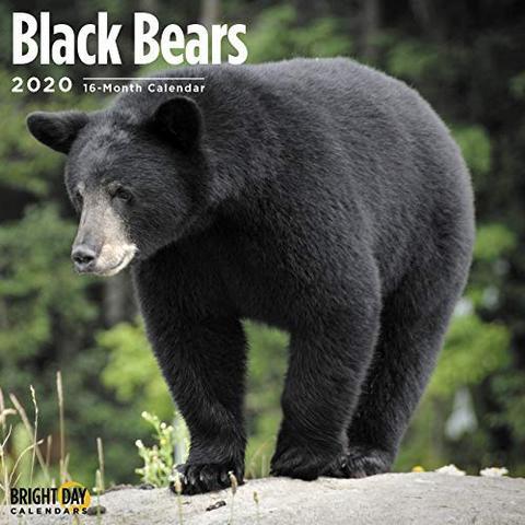 2020 Black Bear Calendar! Did you know it is estimated