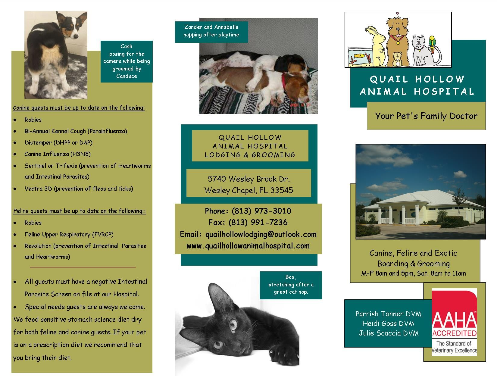 pet boarding services and veterinary care pets world