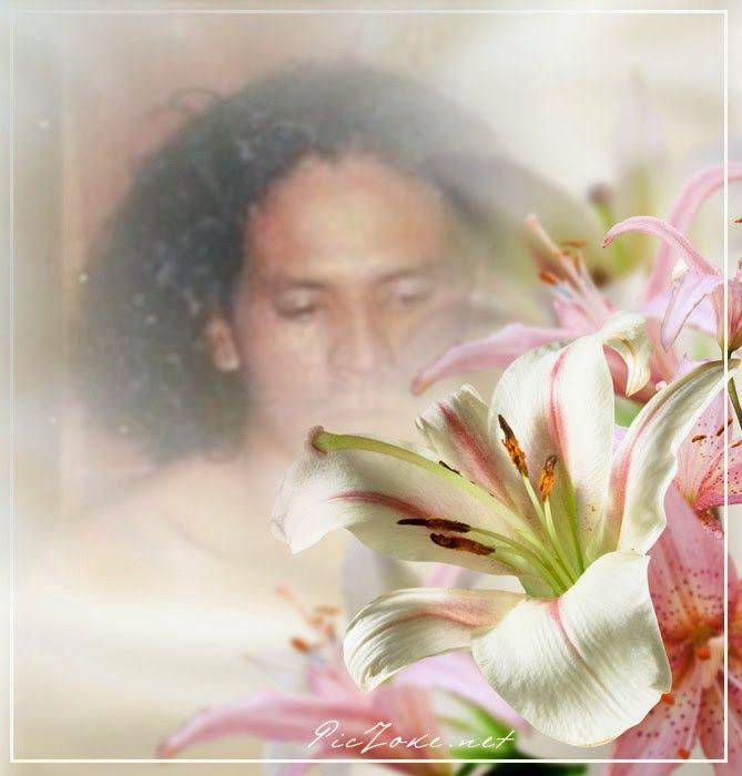 TERNURA poemas para conquistarte www.balletpaweevii.blogspot.com