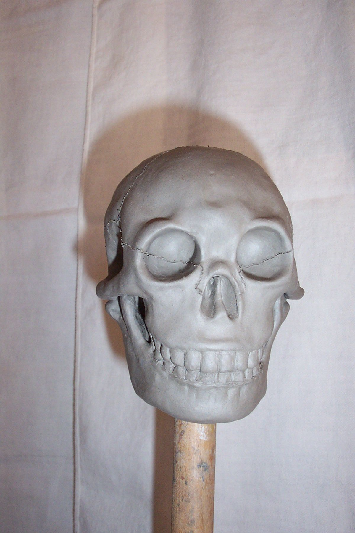 Skeleton made from clay