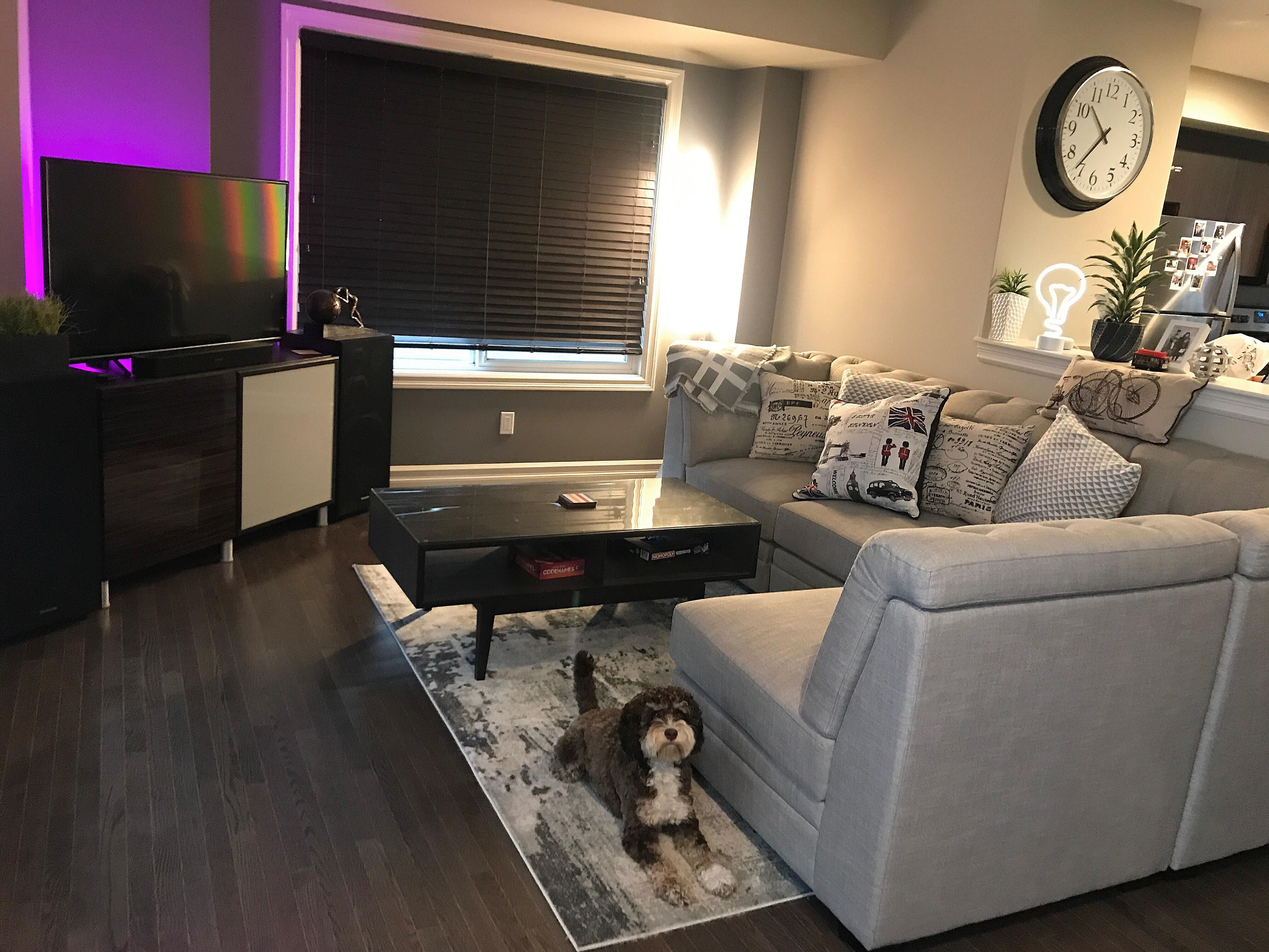 Thanks To All For Helping Me Decorate My Living Room Edmonton Ab Canada Small Living Room Design Man Room Apartment Decor #redecorating #my #living #room