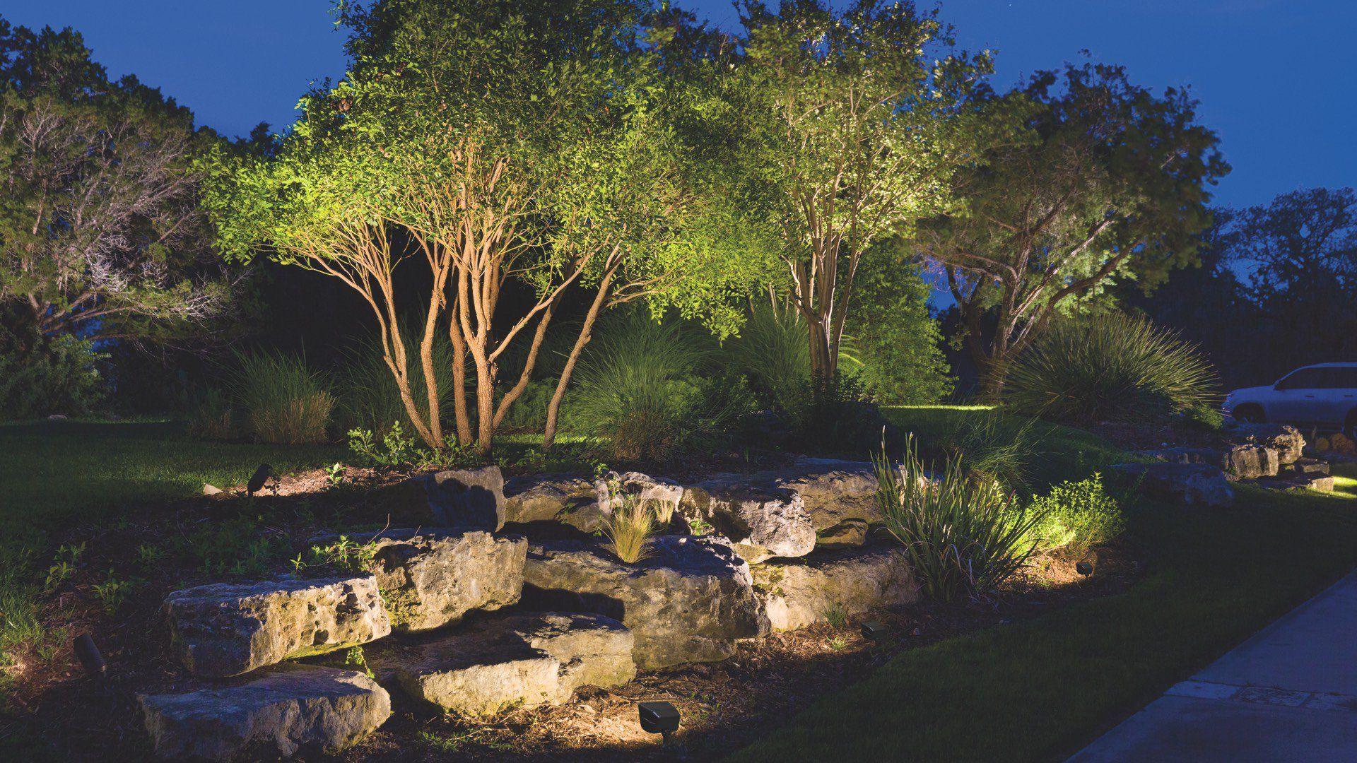 Accent Uplighting Outdoor landscape lighting, Modern