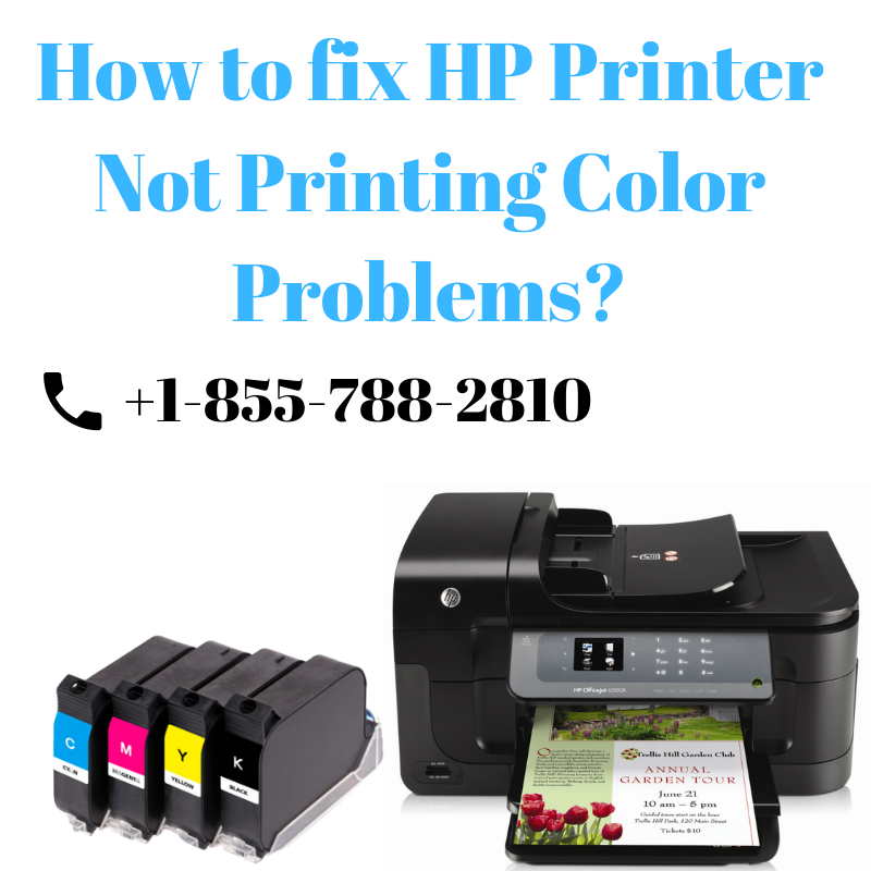 Resolving Issues When the Printer Not Printing color  The black ink