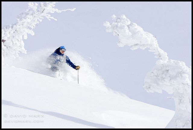 Chest Deep Powder Skiing In The Baldy Knoll Backcountry By David Marx Via Flickr