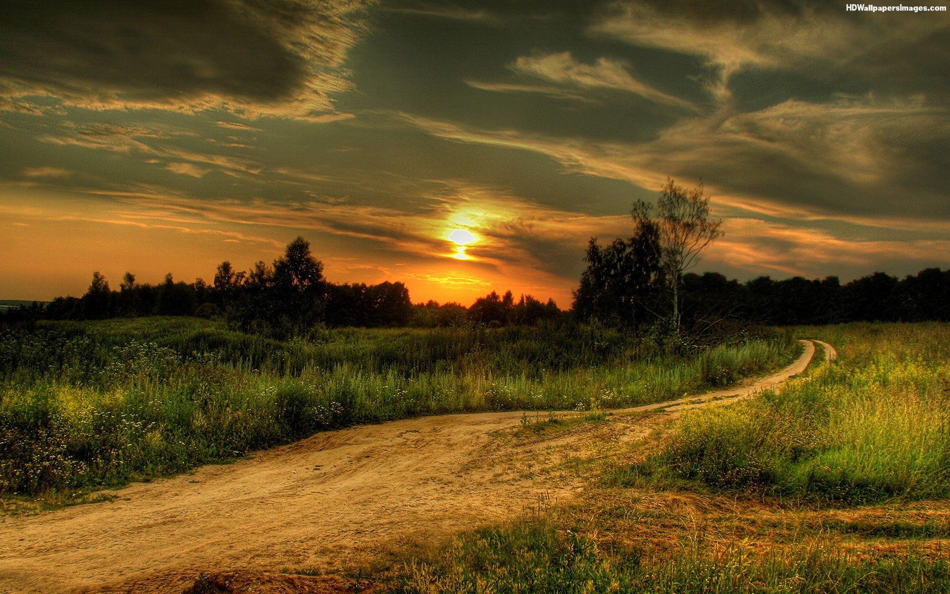 Sunsets Scenic Wallpaper Field Sunset Landscape Nature