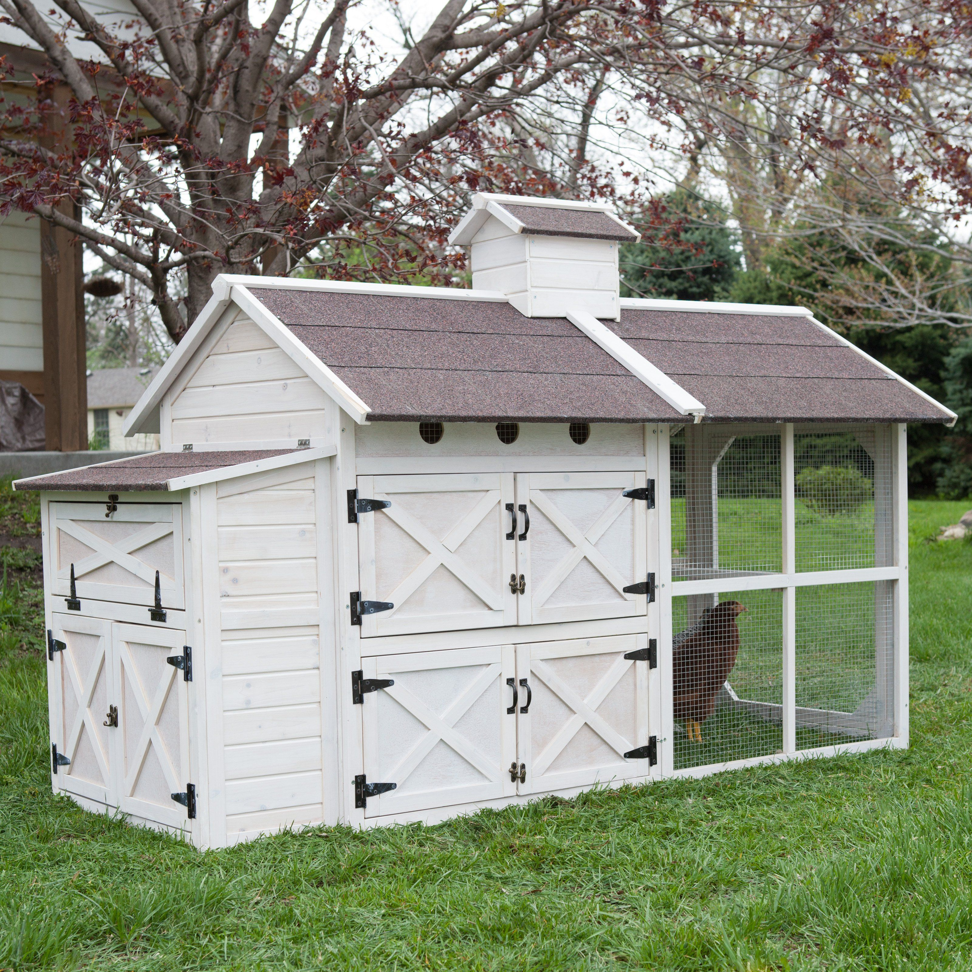 Boomer George Cottage Chicken Coop The Charming Country Style Boomer George Cottage Chicken Chickens Backyard Chicken Coop Decor Backyard Chicken Coops