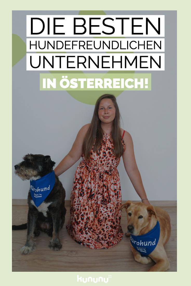 Ranking Die Besten Hundefreundlichen Unternehmen In Osterreich Hunde Hund Nagel Freundlich