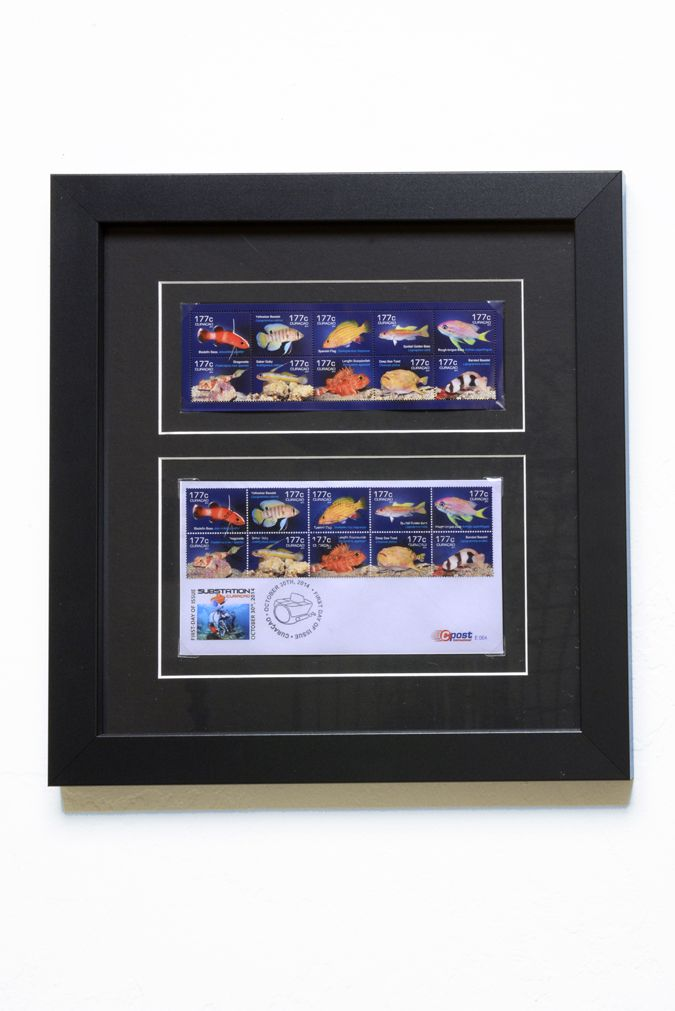 Barry frames valuable stamps with photo corners in a multiple ...