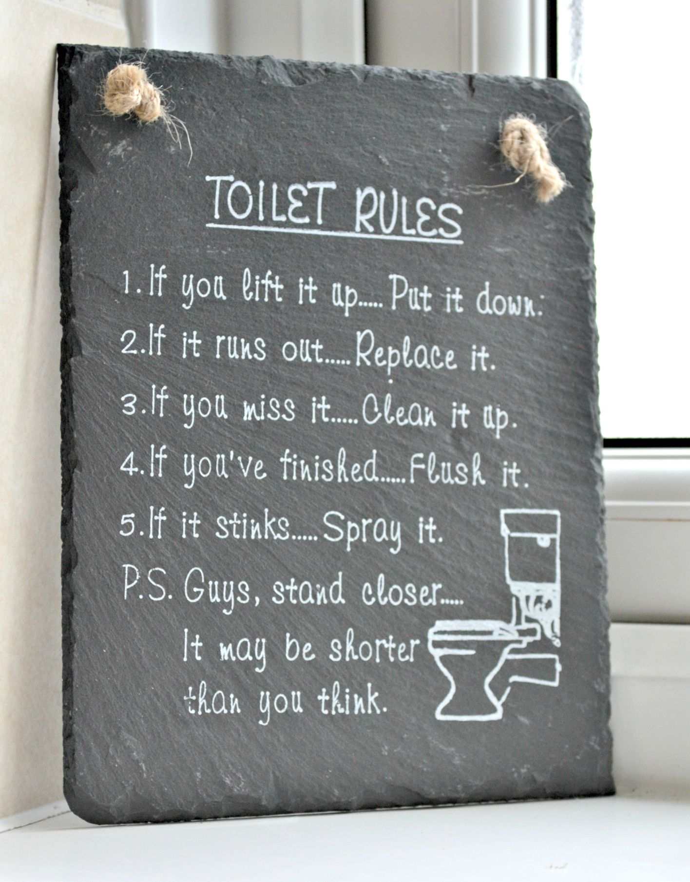 The Toilet Rules A Must Have For Any Bathroom Dominated By Boys