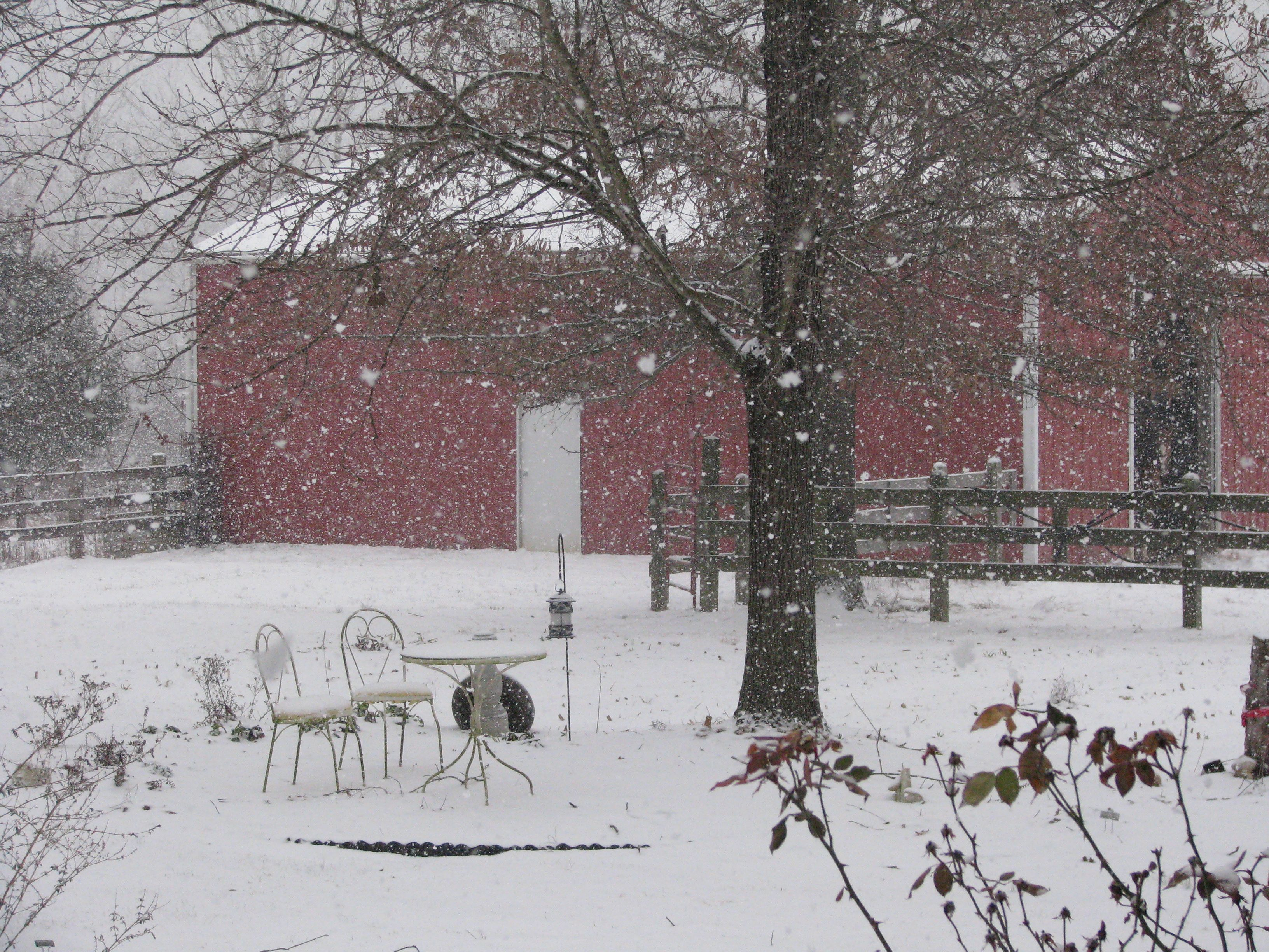 Snowing at Daylilies of the Valley. 2-13-2012. This is our barn.