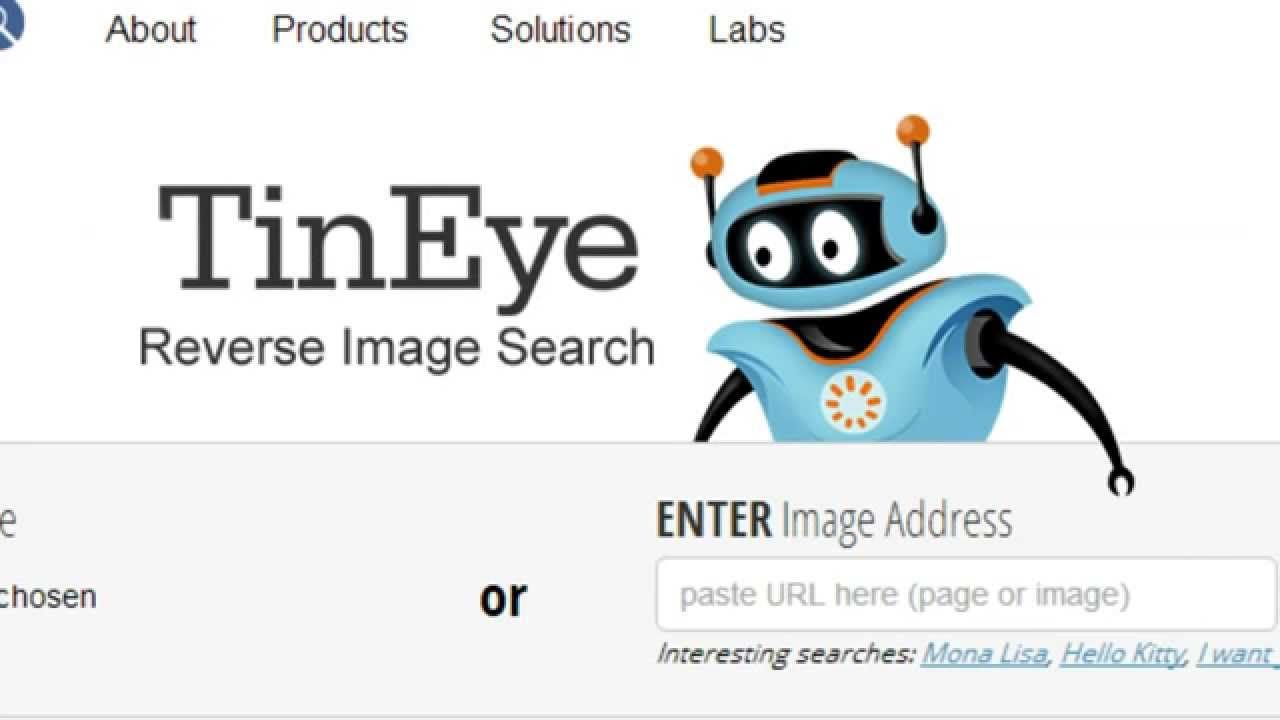 How To Find Similar Pictures Online Tineye Com Reverse Image
