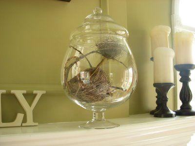 Hope Studios: Birdu0027s Nest Home Decor...how To...want