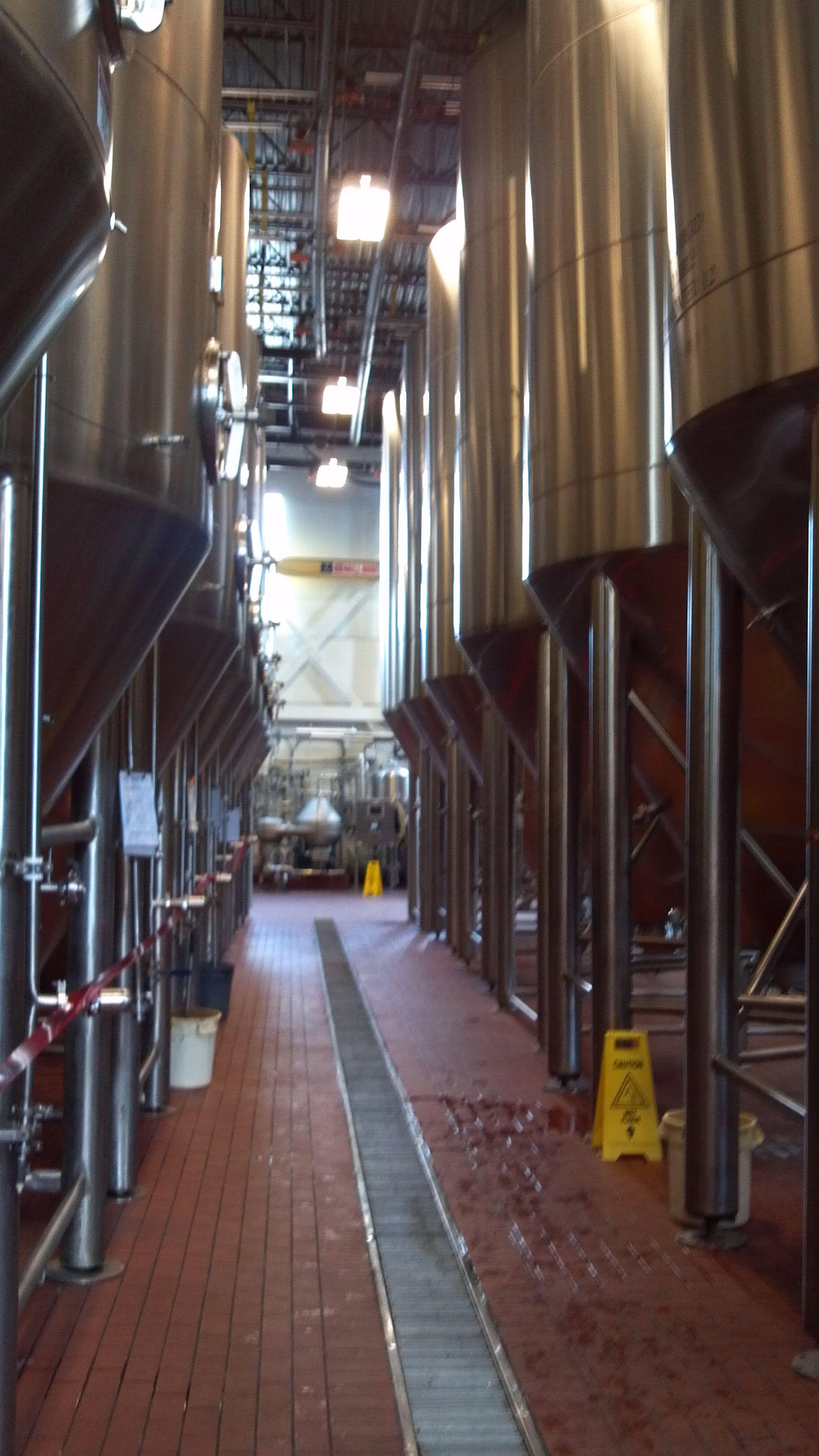 26++ Light craft beer texas info