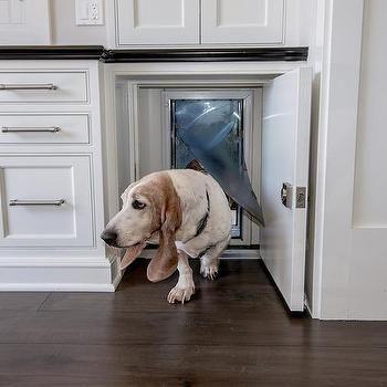 Kitchen Doggy Door Design Home Pinterest Door Design Doors