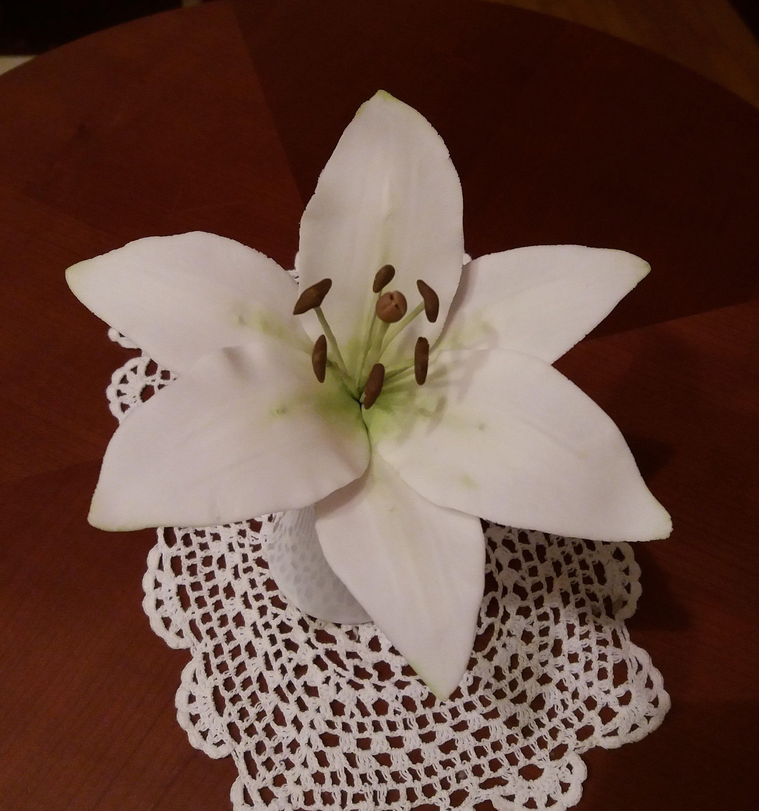 White lily from sugar paste gumpaste ds cakes and sugar flowers white lily from sugar paste gumpaste izmirmasajfo
