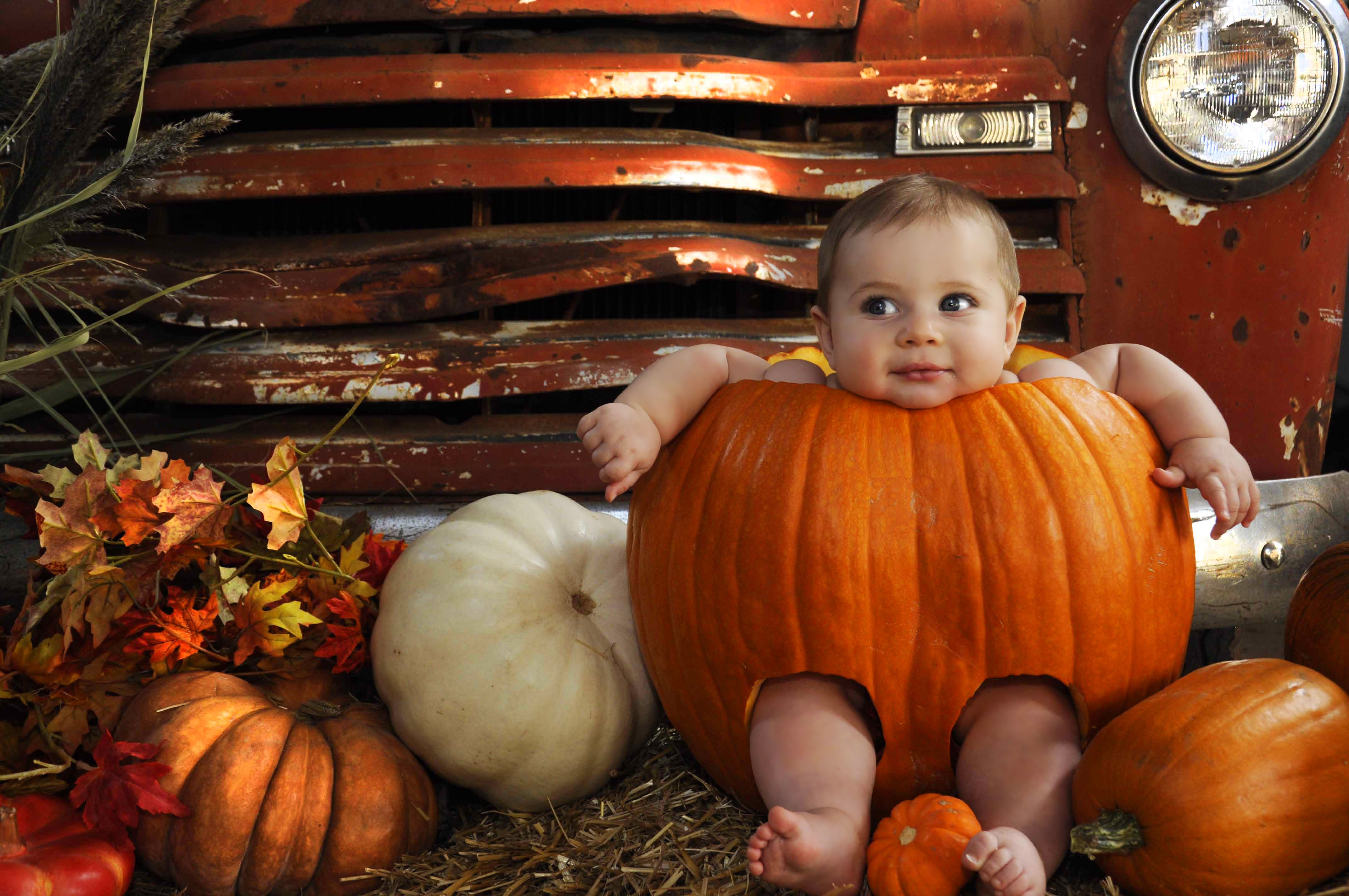Cutest pumpkin in the patch photo by candi chandler