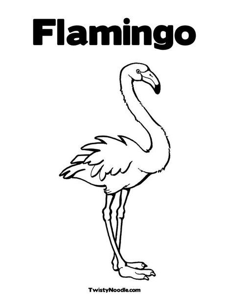 Pink Flamingo Coloring Page From Twistynoodle Com With Images