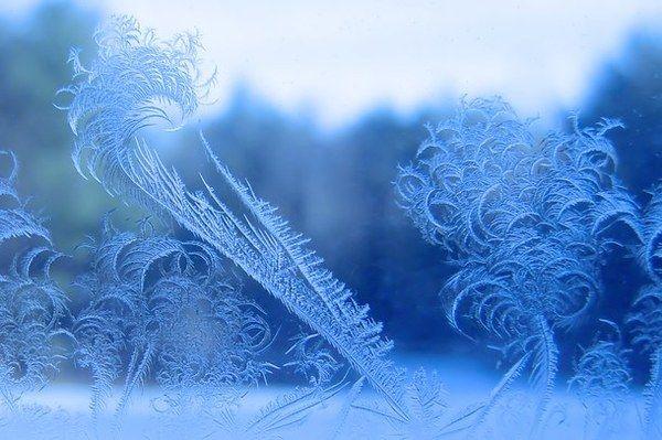 Морозные узоры зима, Фото, мороз, морозные узоры, стекло ...