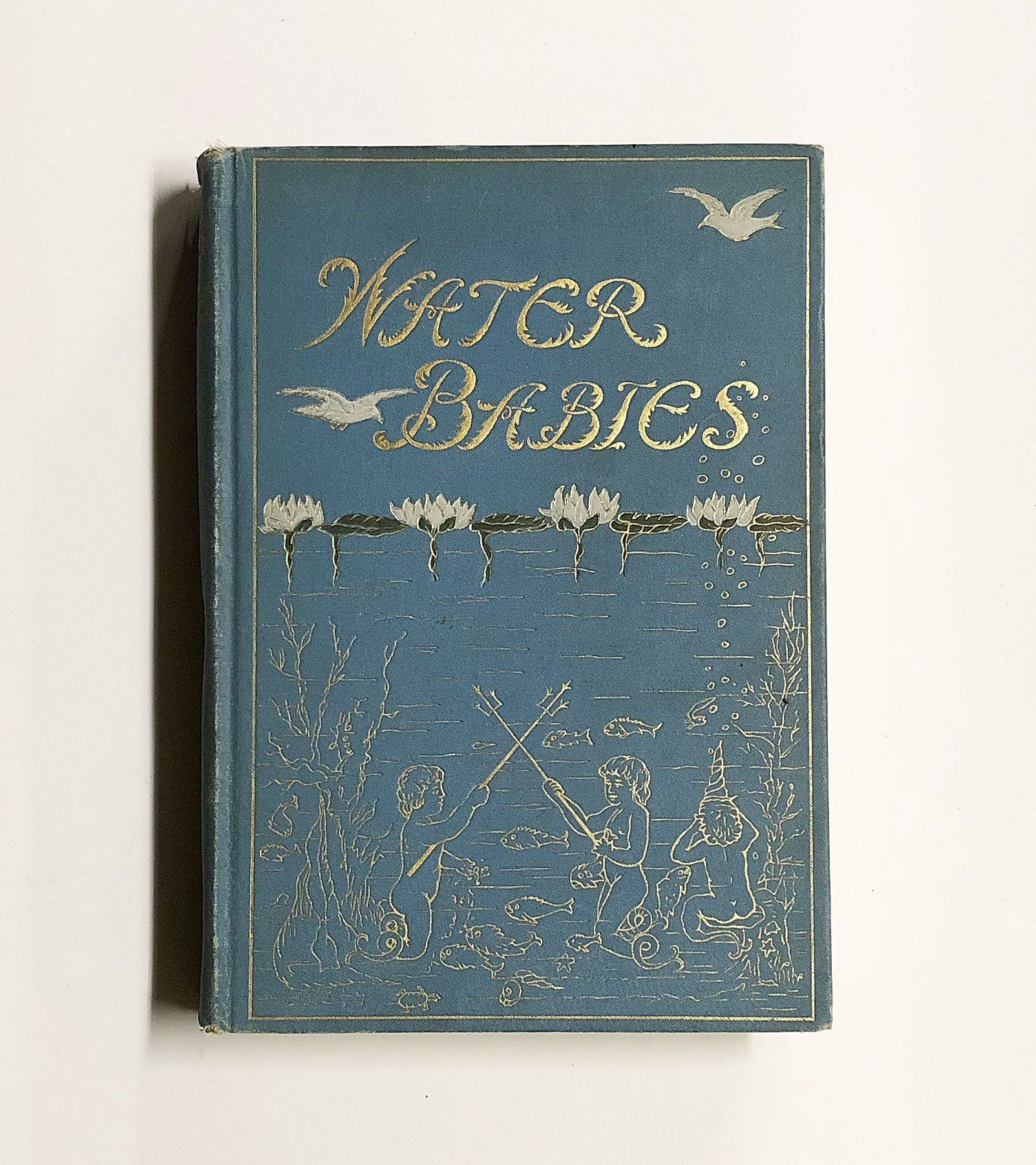 The Water Babies A Fairy Tale For A Land Baby By Charles