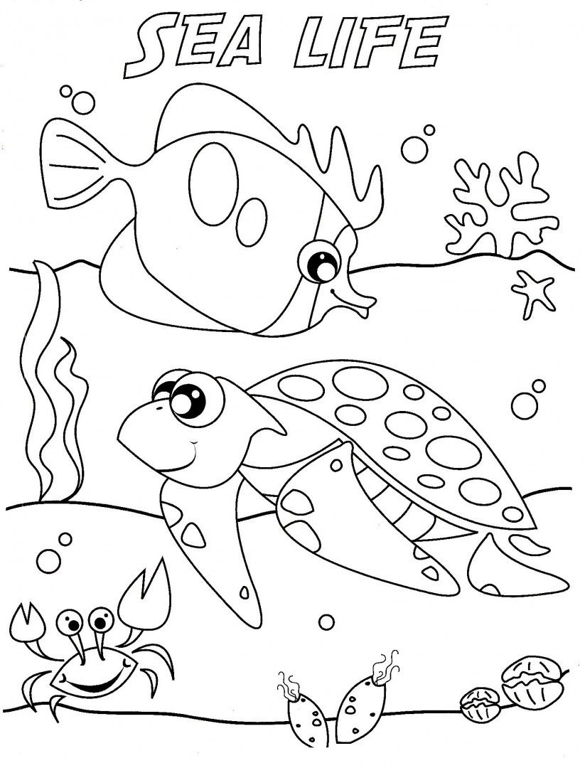 http://colorings.co/sea-life-coloring-pages/ | Colorings | Pinterest