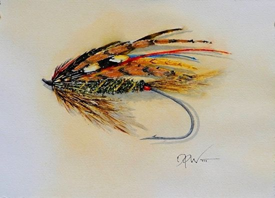 Atlantic Salmon Fly By David Wickline Watercolor 7 5 X 11